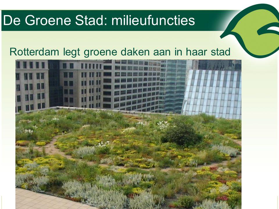 De Groene Stad: milieufuncties