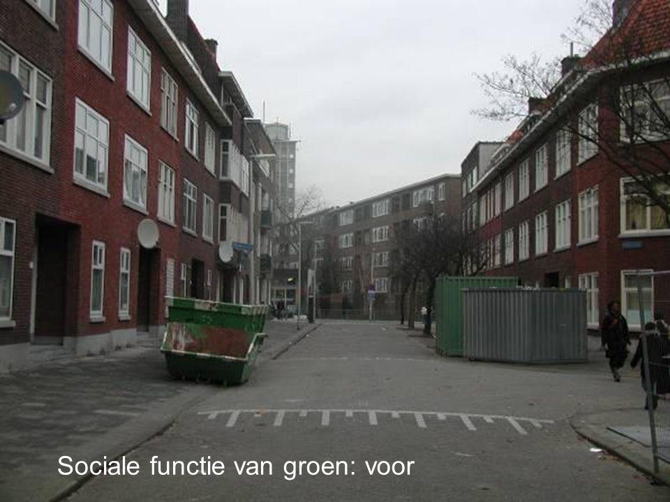 Sociale functie van groen: voor