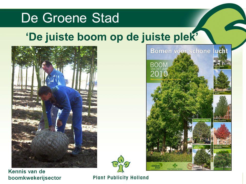 De Groene Stad 'De juiste boom op de juiste plek'