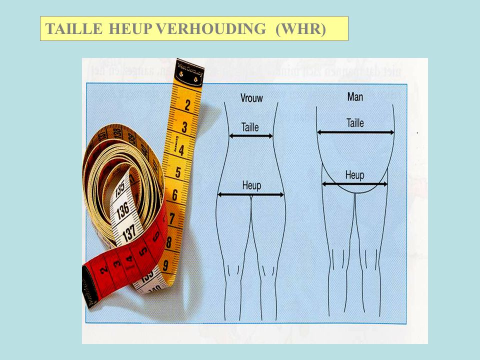 TAILLE HEUP VERHOUDING (WHR)