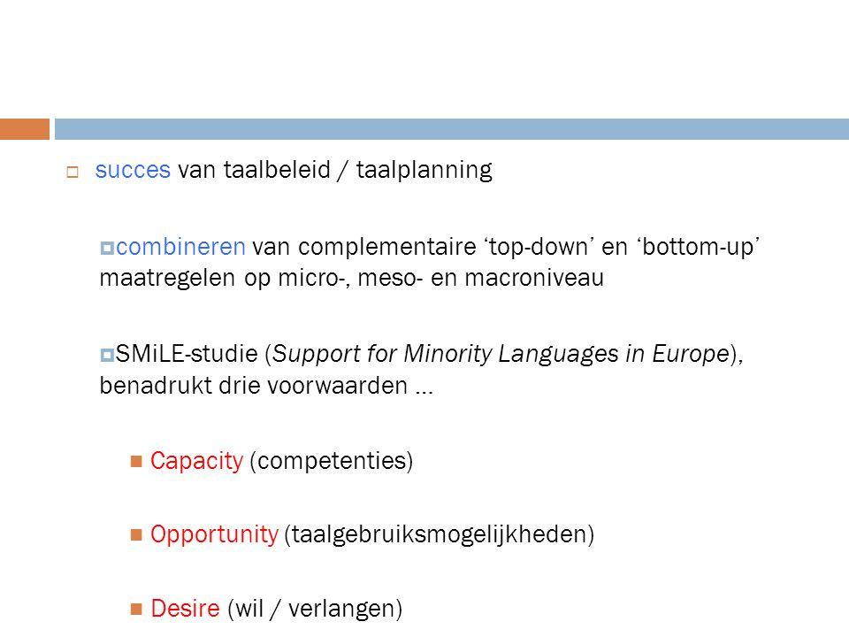 succes van taalbeleid / taalplanning
