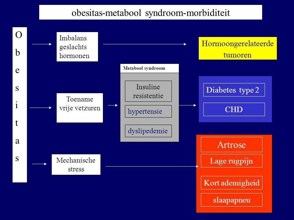 obesitas-metabool syndroom-morbiditeit