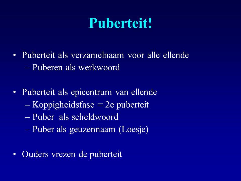 Puberteit! Puberteit als verzamelnaam voor alle ellende