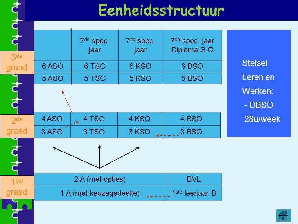 Eenheidsstructuur Stelsel Leren en 3de graad Werken: - DBSO 28u/week
