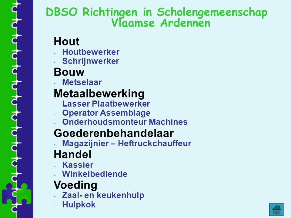DBSO Richtingen in Scholengemeenschap Vlaamse Ardennen