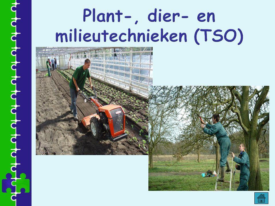 Plant-, dier- en milieutechnieken (TSO)