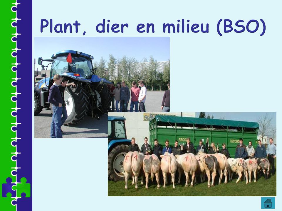 Plant, dier en milieu (BSO)