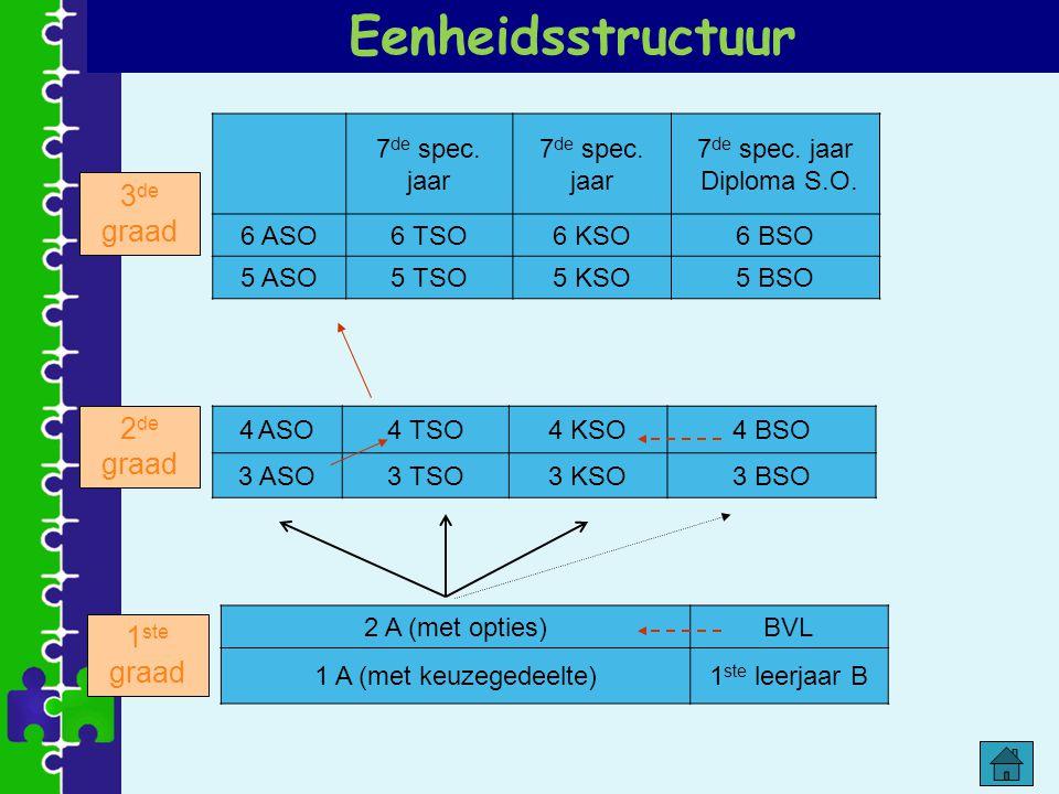 Eenheidsstructuur 3de graad 2de graad 1ste graad 7de spec. jaar