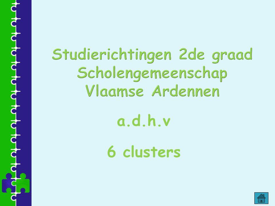 Studierichtingen 2de graad Scholengemeenschap Vlaamse Ardennen