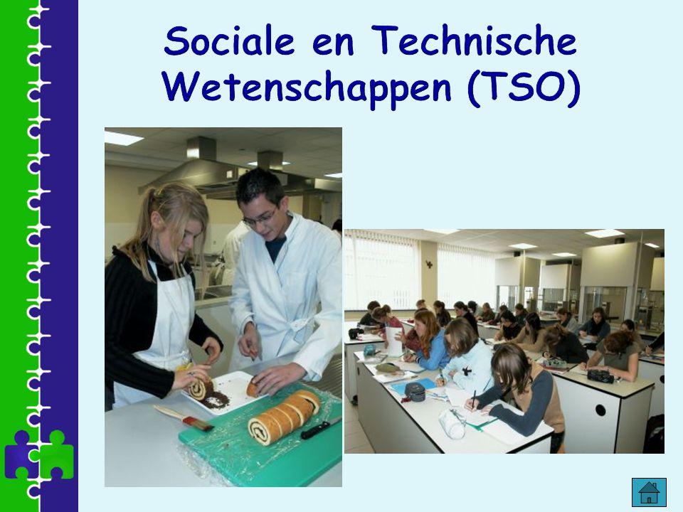 Sociale en Technische Wetenschappen (TSO)