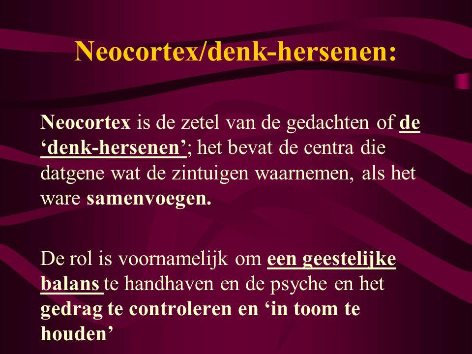 Neocortex/denk-hersenen:
