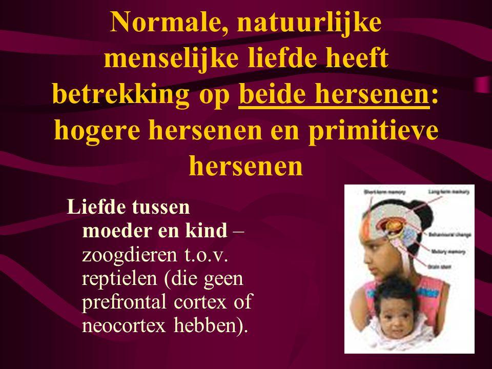 Normale, natuurlijke menselijke liefde heeft betrekking op beide hersenen: hogere hersenen en primitieve hersenen