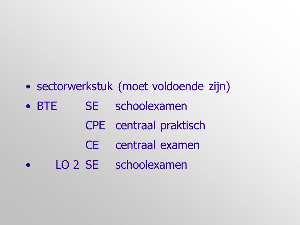 sectorwerkstuk (moet voldoende zijn) BTE SE schoolexamen