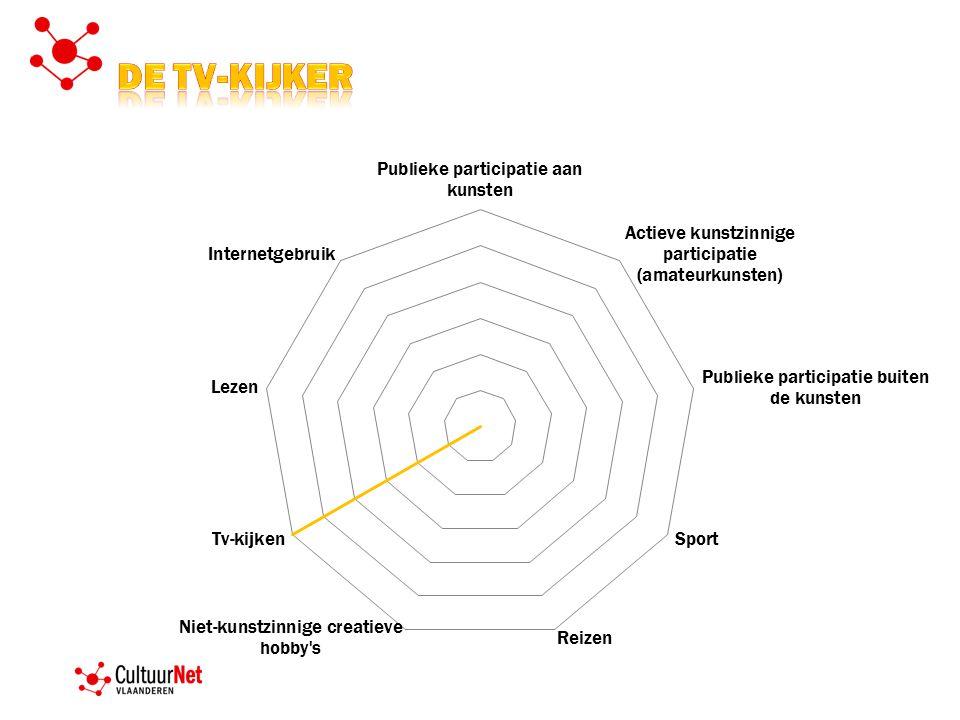 De TV-kijker