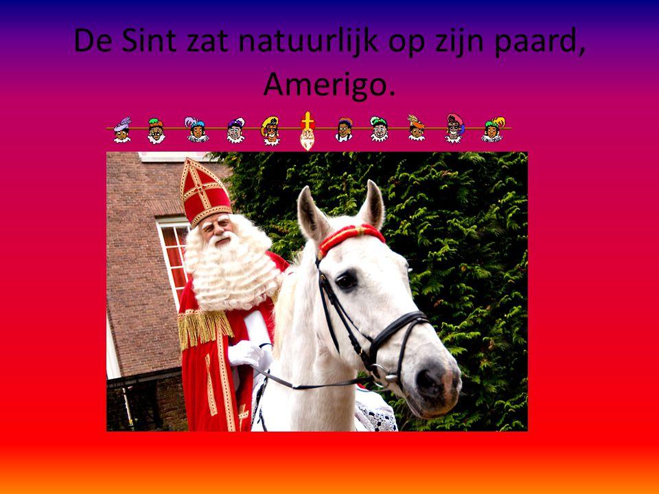 De Sint zat natuurlijk op zijn paard, Amerigo.