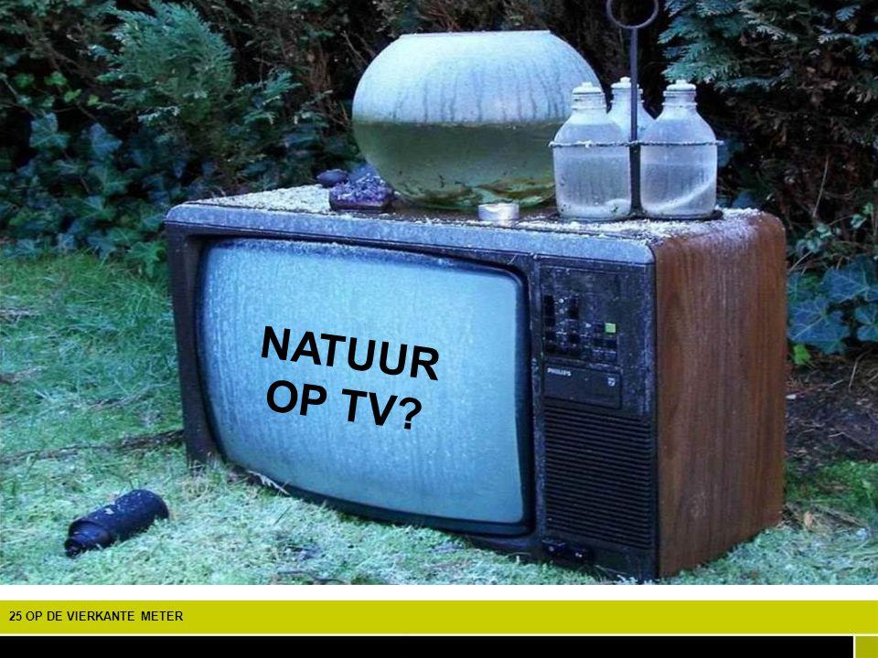 NATUUR OP TV EEN SPEURTOCHT NAAR DE BIODIVERSITEIT