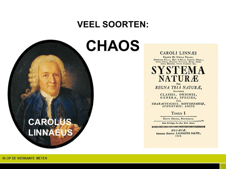 CHAOS VEEL SOORTEN: CAROLUS LINNAEUS