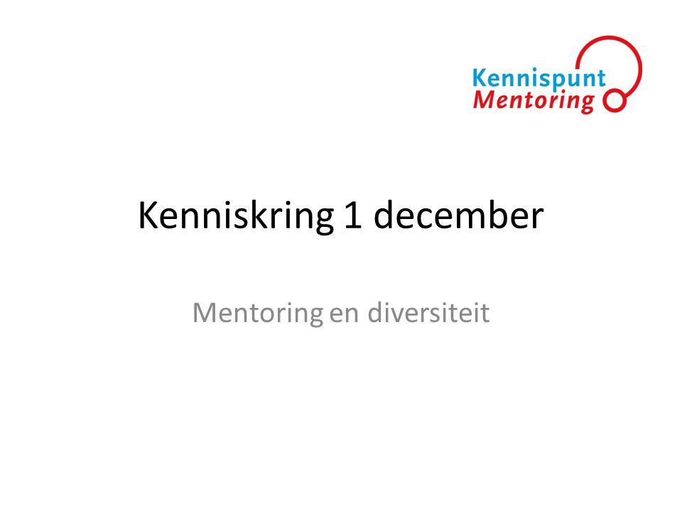 Mentoring en diversiteit