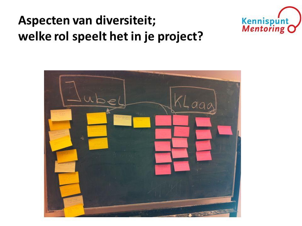 Aspecten van diversiteit; welke rol speelt het in je project