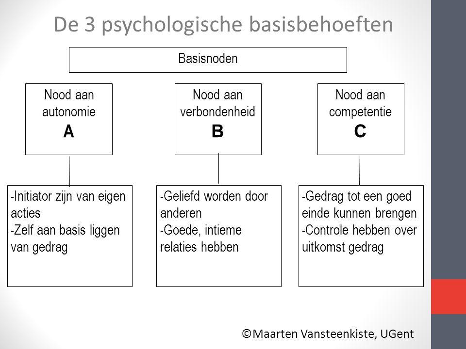 De 3 psychologische basisbehoeften