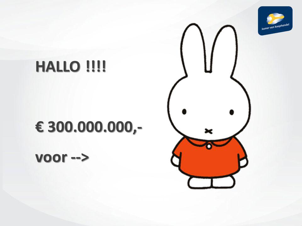 HALLO !!!! € 300.000.000,- voor -->