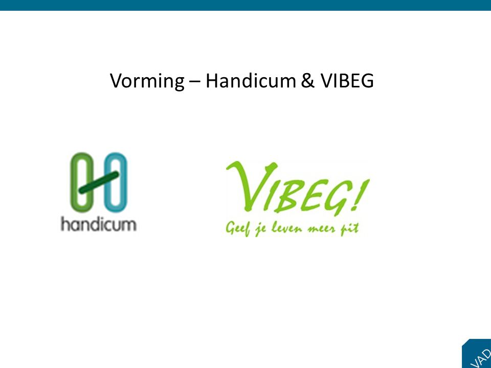 Vorming – Handicum & VIBEG