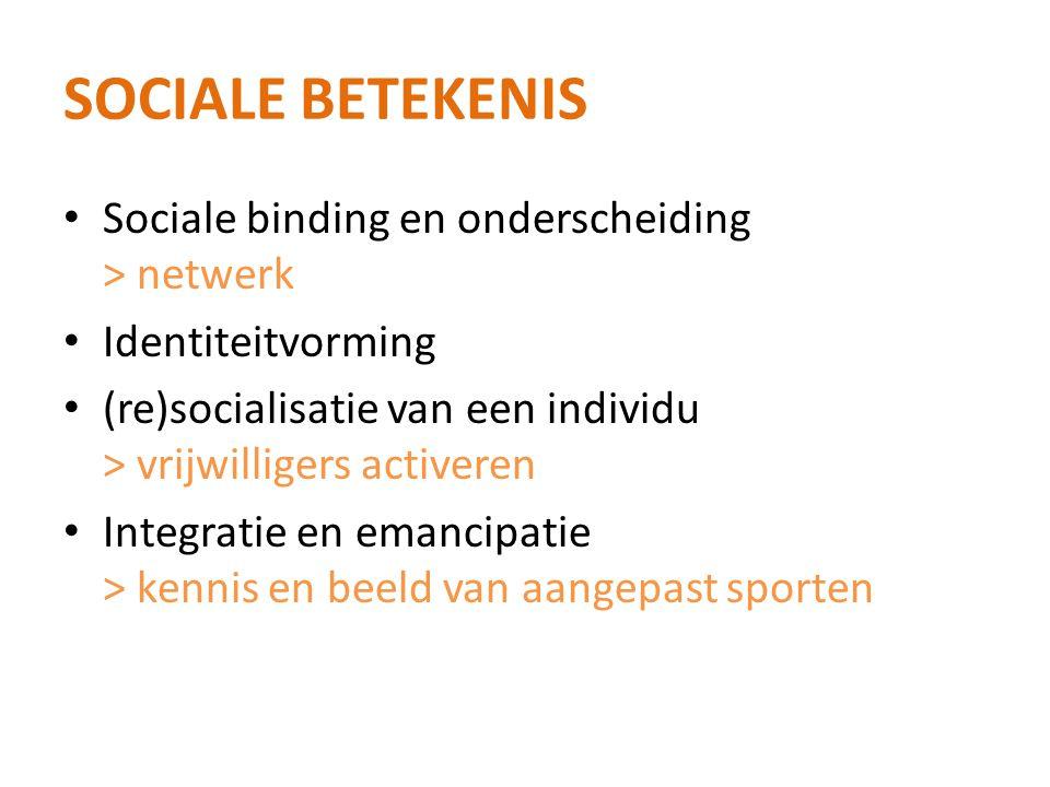 Sociale betekenis Sociale binding en onderscheiding > netwerk