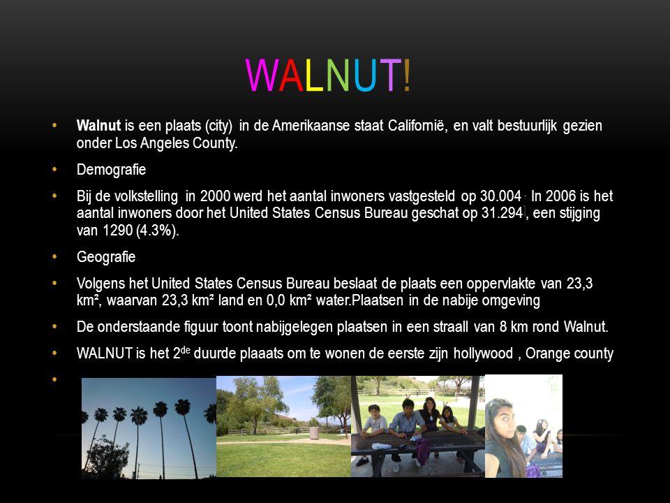 WALNUT! Walnut is een plaats (city) in de Amerikaanse staat Californië, en valt bestuurlijk gezien onder Los Angeles County.