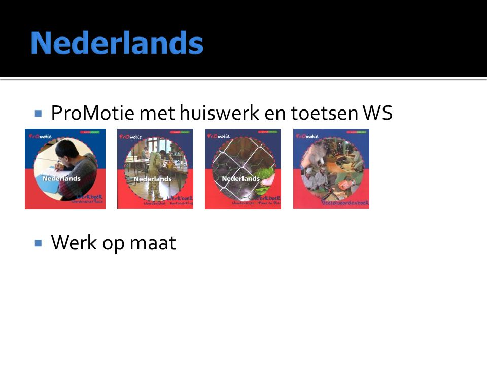 Nederlands ProMotie met huiswerk en toetsen WS Werk op maat