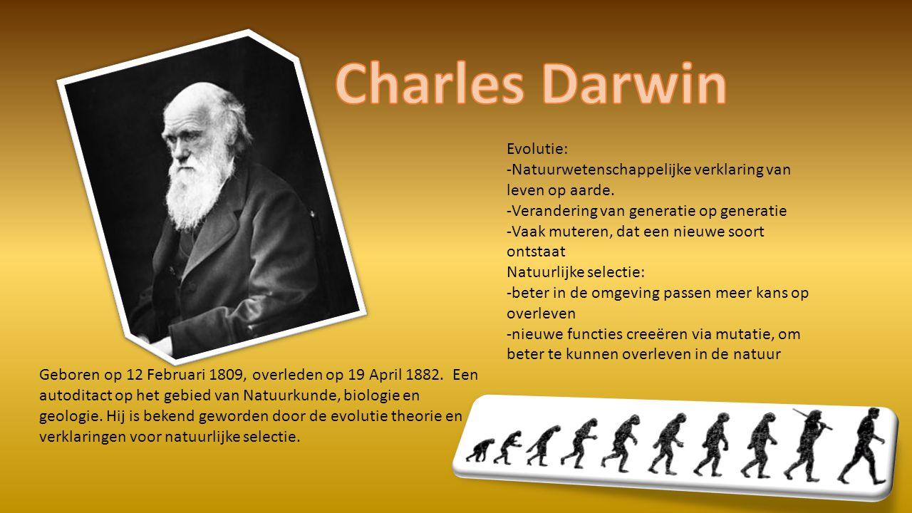 Charles Darwin Evolutie: