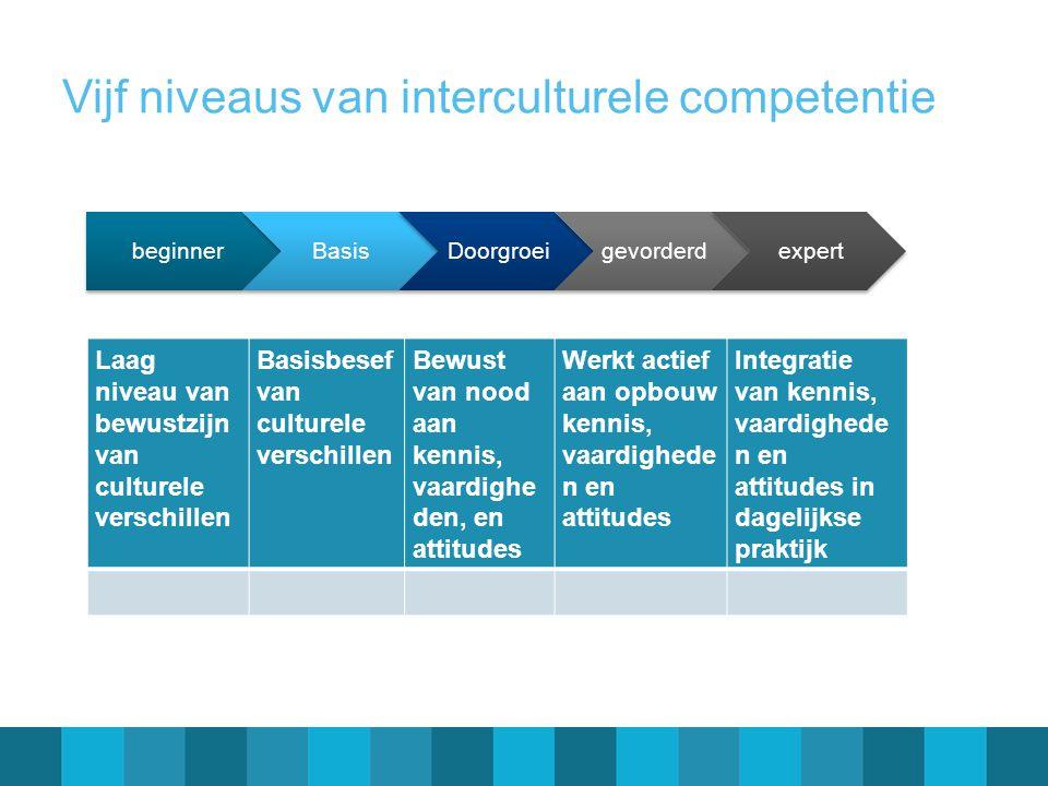 Vijf niveaus van interculturele competentie