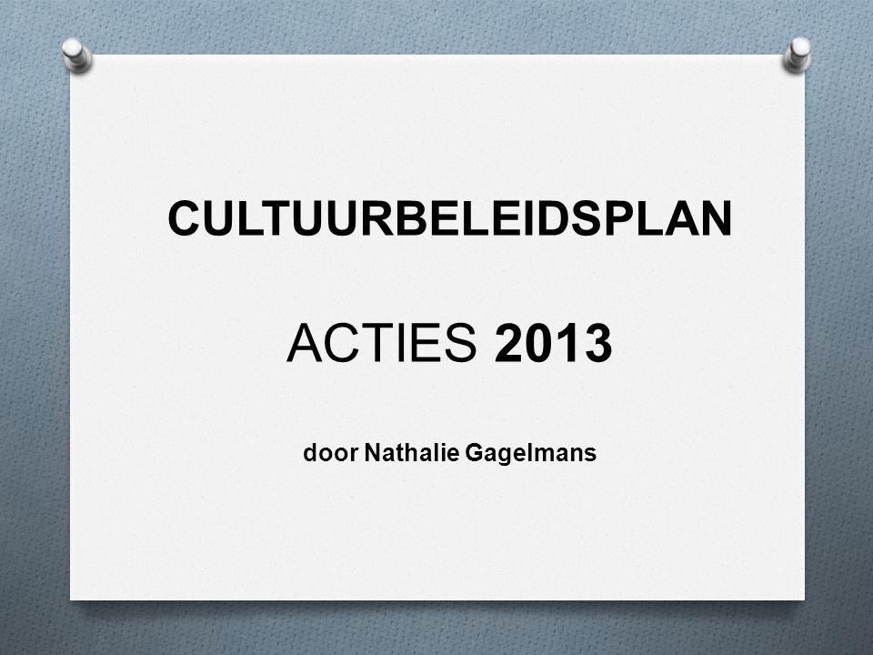 CULTUURBELEIDSPLAN ACTIES 2013 door Nathalie Gagelmans