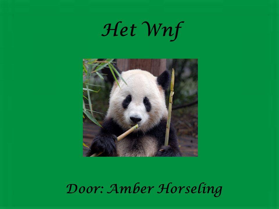 Het Wnf Door: Amber Horseling