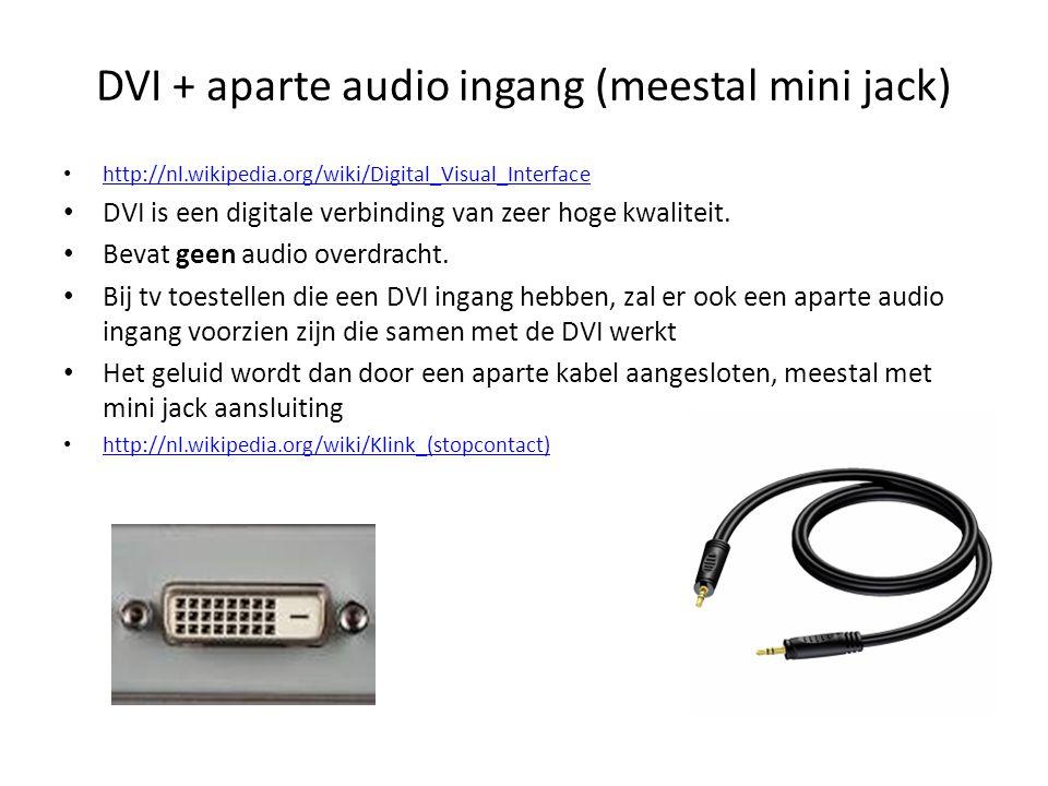 DVI + aparte audio ingang (meestal mini jack)