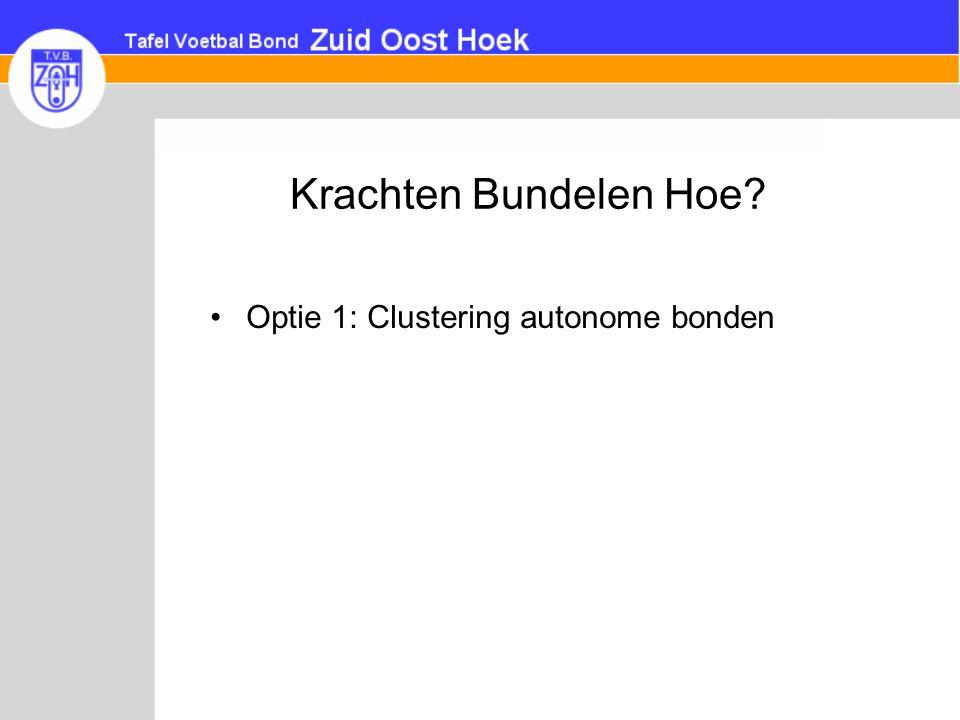 Krachten Bundelen Hoe Optie 1: Clustering autonome bonden