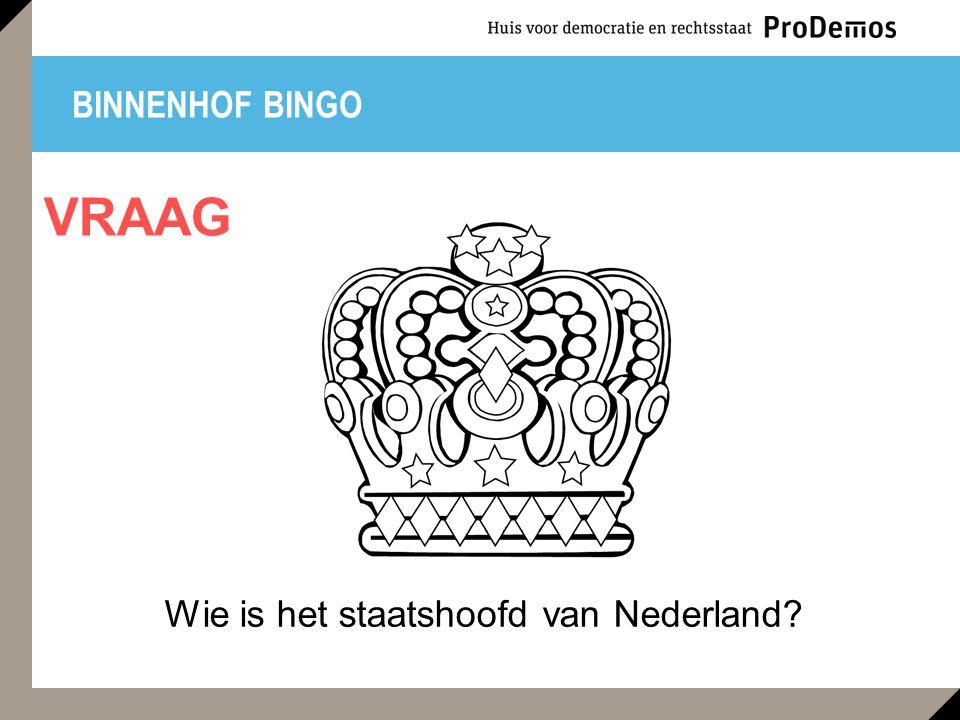 Wie is het staatshoofd van Nederland