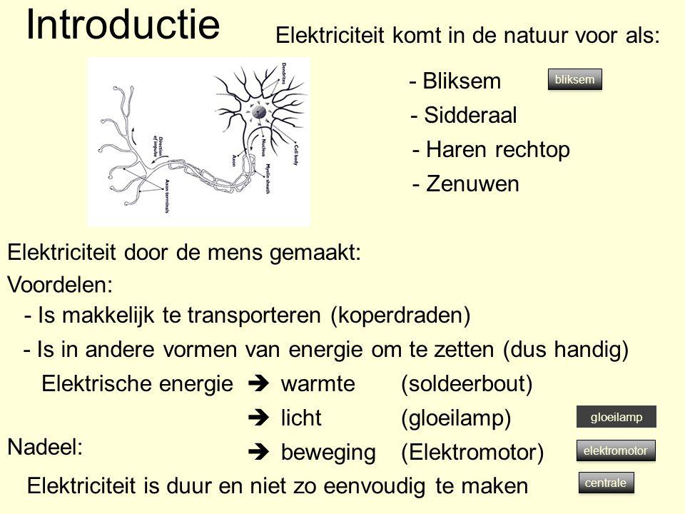 Introductie Elektriciteit komt in de natuur voor als: - Bliksem