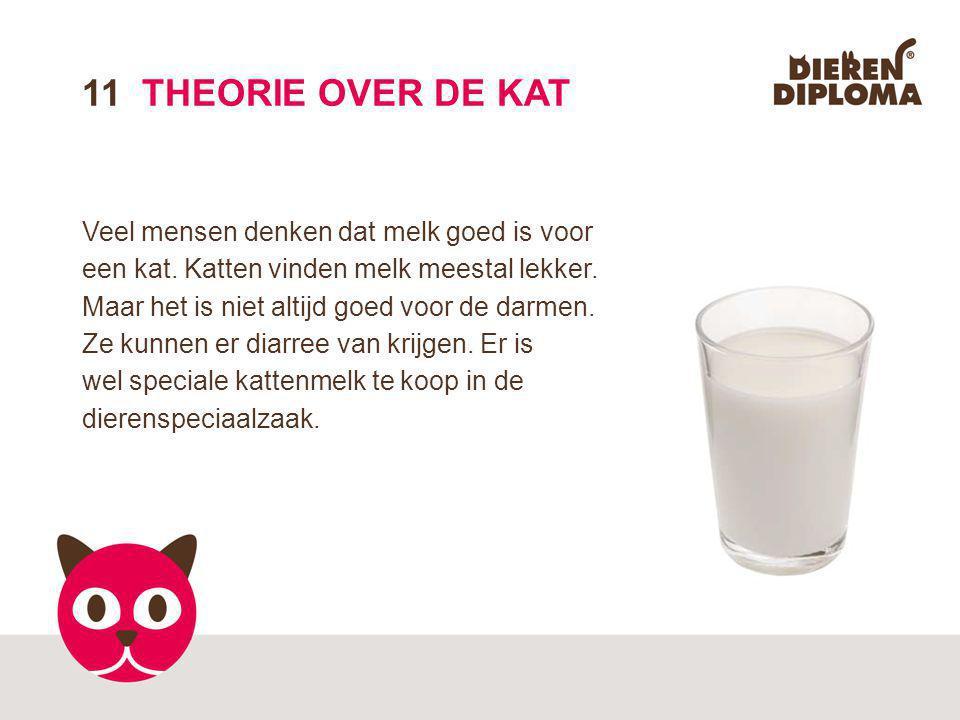 11 THEORIE OVER DE KAT Veel mensen denken dat melk goed is voor