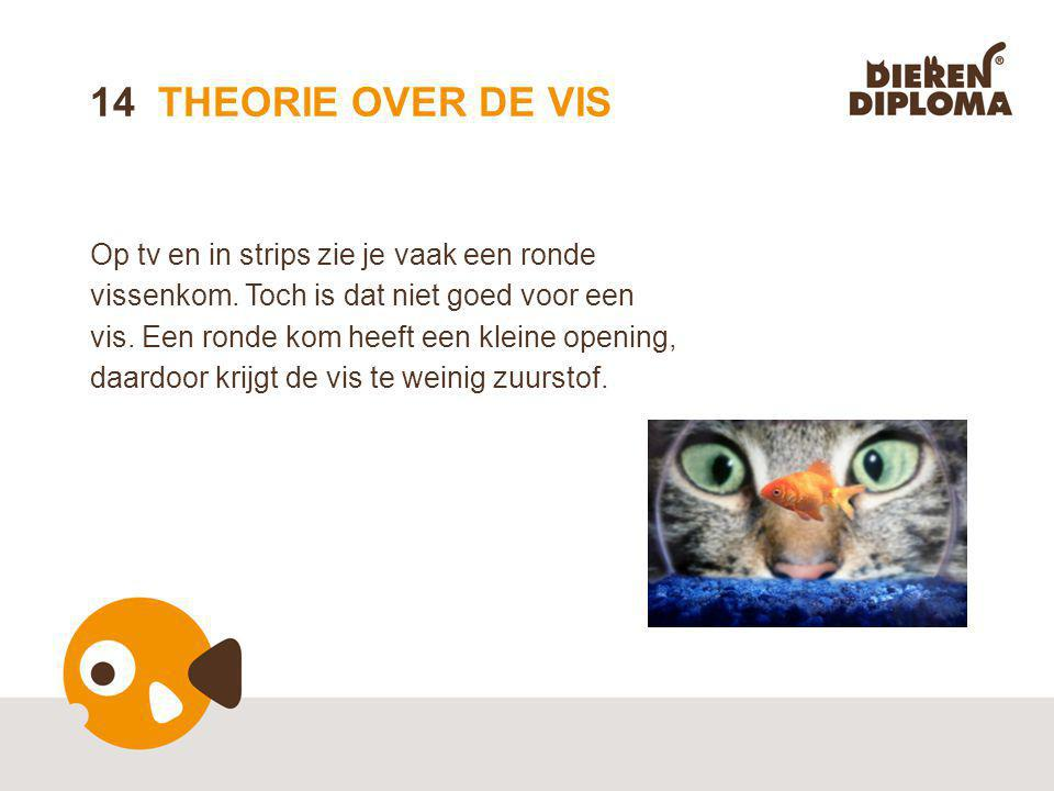 14 THEORIE OVER DE VIS