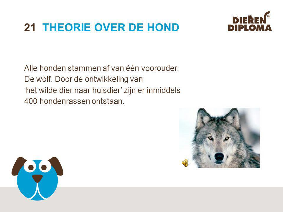 21 THEORIE OVER DE HOND