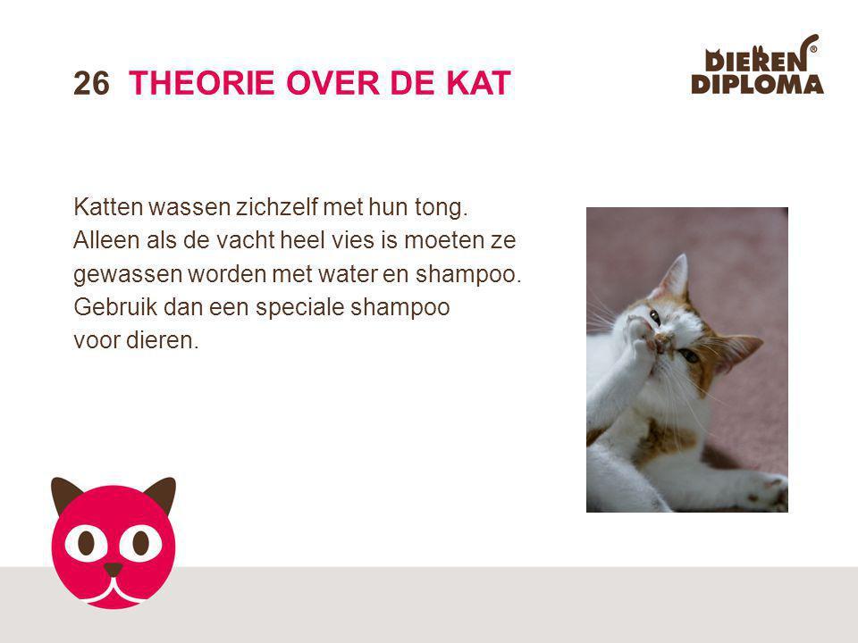 26 THEORIE OVER DE KAT Katten wassen zichzelf met hun tong.