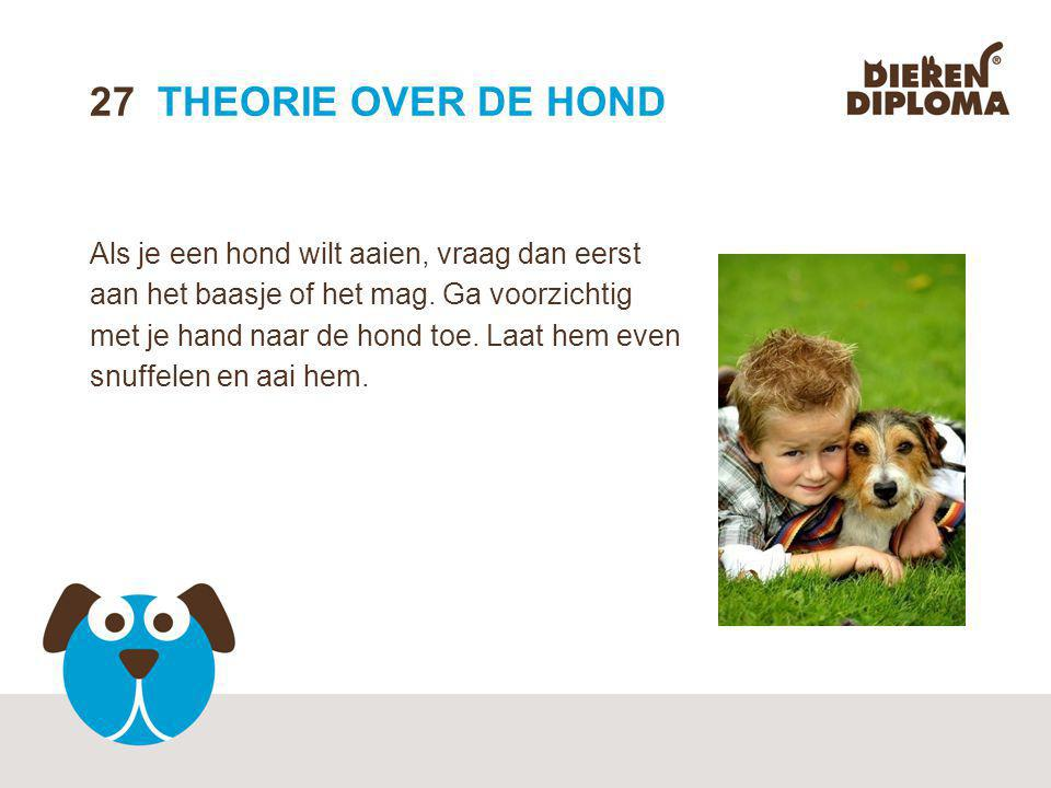 27 THEORIE OVER DE HOND