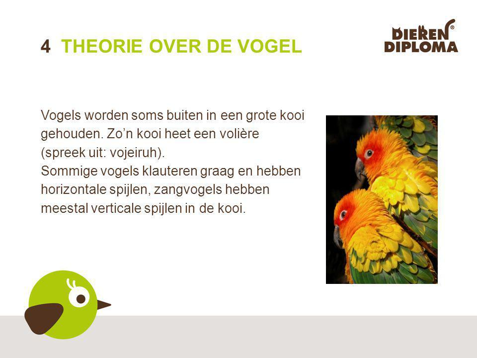4 THEORIE OVER DE VOGEL Vogels worden soms buiten in een grote kooi