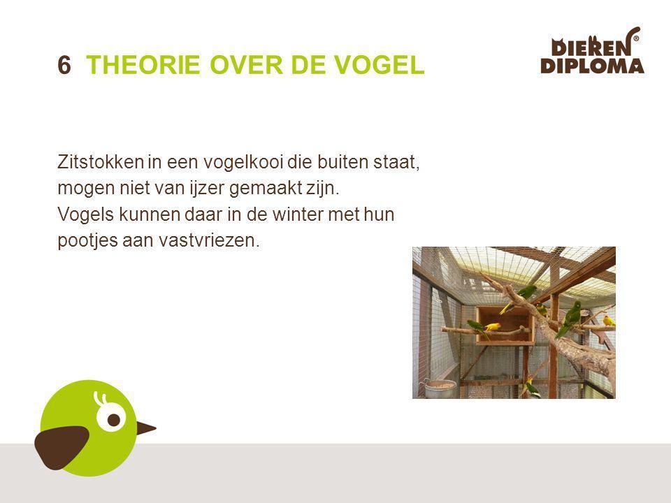 6 THEORIE OVER DE VOGEL Zitstokken in een vogelkooi die buiten staat, mogen niet van ijzer gemaakt zijn.