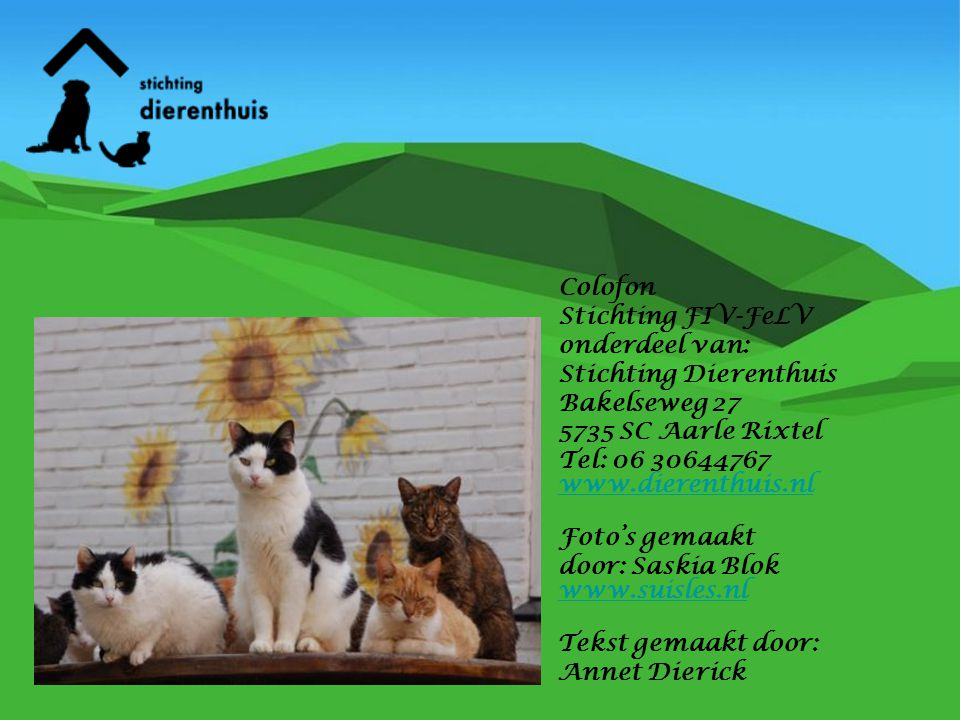 Colofon Stichting FIV-FeLV. onderdeel van: Stichting Dierenthuis. Bakelseweg 27. 5735 SC Aarle Rixtel.