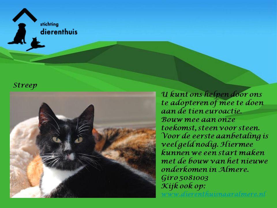 Streep U kunt ons helpen door ons te adopteren of mee te doen aan de tien euroactie.