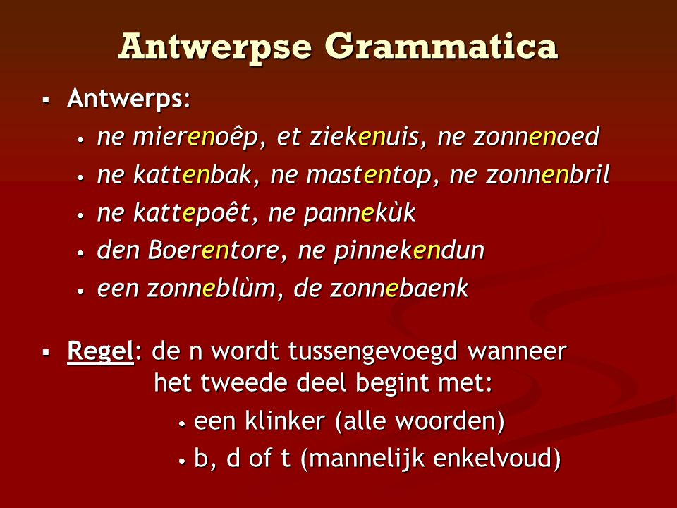 Antwerpse Grammatica Antwerps: