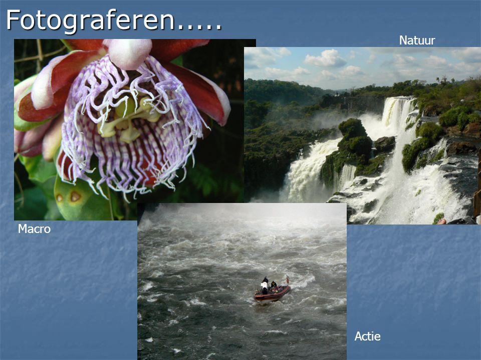 Fotograferen..... Natuur Macro Actie