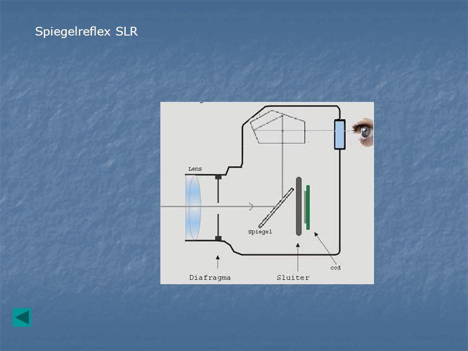 Spiegelreflex SLR