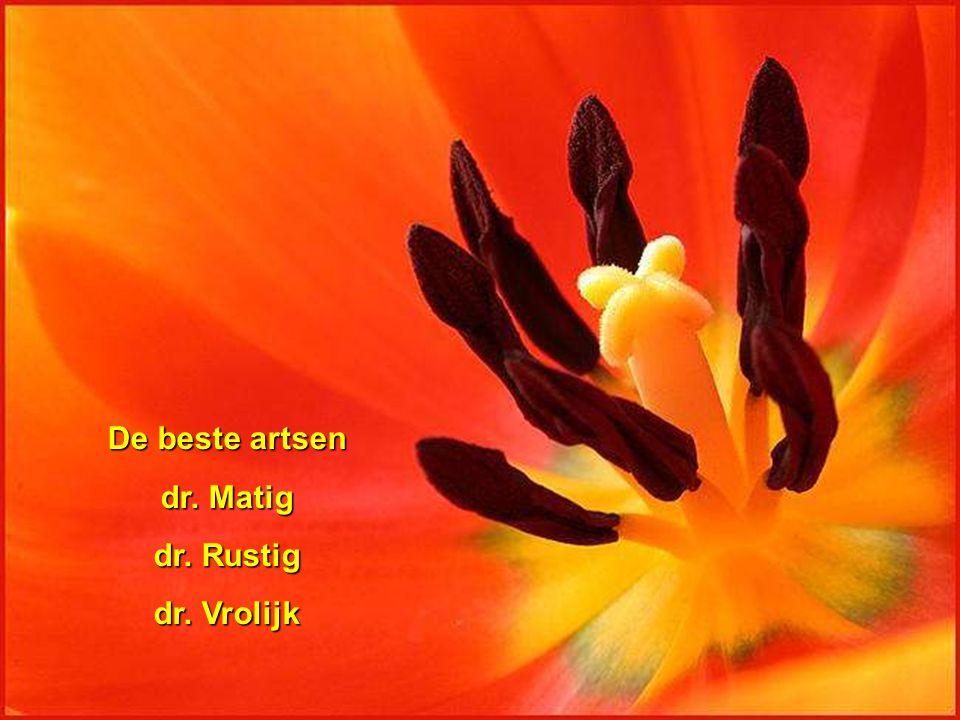De beste artsen dr. Matig dr. Rustig dr. Vrolijk